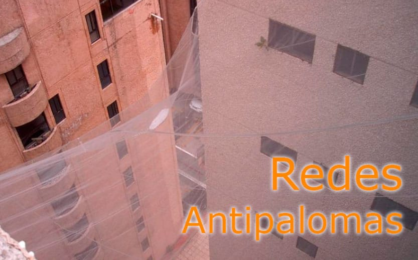colocacion redes antipalomas valencia edificios